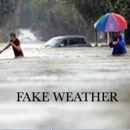 FAKE WEATHER